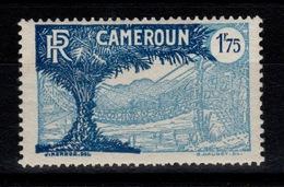 Cameroun - YV 147 N* - Cameroun (1915-1959)