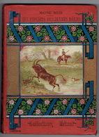 1890 COLLECTION HETZEL - MAYNE REID - LES EXPLOITS DES JEUNES BOERS - ILLUSTRATIONS DE RIOU -PETITE BIBLIOTHEQUE BLANCHE - Livres, BD, Revues