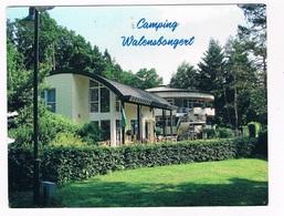L-2317  TROISVIERGES : Camping Walensbongert - Troisvièrges