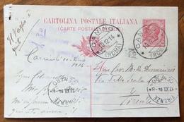 CANINO * (ROMA) * 10/12/14 SU CARTOLINA POSTALE  LEONI (13) PER FIRENZE - Marcophilia