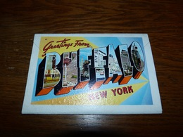 BC4-3-25-2 Souvenir Folder (12 Vues) Greetings From Buffalo New York - NY - New York