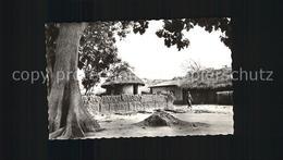 12466821 Dahomey Temple Du Python Fetiche A Ouidah - Ohne Zuordnung