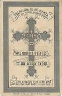 DP. CAROLUS SOENEN ° HANDSAEME 1833- + PROVEN 1895 - Godsdienst & Esoterisme