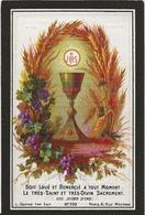 DP. DOMINICUS DE WREE ° STEKENE 1806- + 1879 - Godsdienst & Esoterisme
