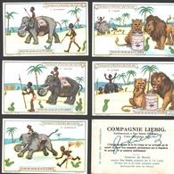 Liebig - Vintage Chromos - Series Of 6 / Série Complète - Transport D'extrait De Viande - Français - Liebig