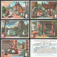 Liebig - Vintage Chromos - Series Of 6 / Série Complète - Vénération Des Animaux - Français - Liebig