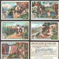 Liebig - Vintage Chromos - Series Of 6 / Série Complète - La Flore Dans Les Hautes Montagnes - Français - Liebig
