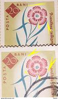 Errors Romania 1961, MI 2021A, Flowers Carnation With  Printed Leafs Misplaced - Variedades Y Curiosidades