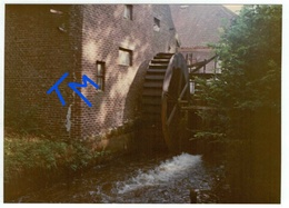 Ellikom - Photo De Janvier 1984 - Molen - Watermolen - Meeuwen-Gruitrode