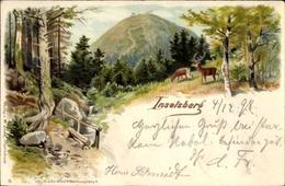 Lithographie Brotterode Trusetal In Thüringen, Blick Durch Wälder Zum Inselberg, Rehe Am Bach - Deutschland