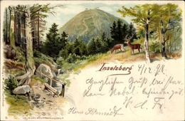 Lithographie Brotterode Trusetal In Thüringen, Blick Durch Wälder Zum Inselberg, Rehe Am Bach - Duitsland