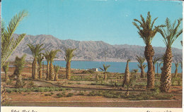 Eilat - Red Sea - Israele