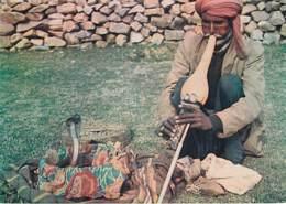 COBRA AND THE SNAKE CHARMER - India