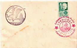 Brazil Stamp On Cover - Brazil