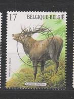 COB 2749 Oblitération Centrale KRUIBEKE Cerf - Belgique