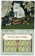 CALENDAR : 1906 - CATS / KITTENS - THE THREE STUDENTS / POSTMARK - LONDON (SINGLE CIRCLE) / ADDRESS - WALTHAMSTOW - Chats