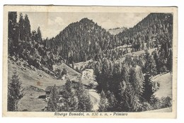 1676 - ALBERGO DOMADOI PRIMIERO TRENTO 1937 - Trento