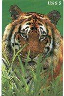 UNITED STATES - B.E.L. - THEMATIC ANIMALS TIGER - MINT - Verenigde Staten