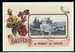 HABAY  La  NEUVE ...  2 Cartes Souvenirs Gare ... Train  Creations Modernes Série Limitée - Habay