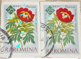 Errors Romania 1961, MI 2021A, Flowers Peony With Double Leaf In Different Shade - Variedades Y Curiosidades