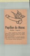 CPA FANTAISIE-HUMOUR   PAPILLON DU MAROC  (Phallus Vulgaris)   Oct 2019  990 - Contemporary (from 1950)