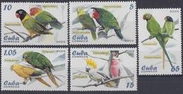 2005Cuba4679-4683Parrots - Perroquets & Tropicaux