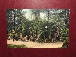 Cartolina Basel - Zoolog Garten Eulenburg - 1952 - Cartoline