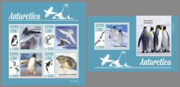 SIERRA LEONE 2019 MNH Antarctica Animals Tiere Der Antarktis Animaux De Antarctique M/S+S/S - OFFICIAL ISSUE - DH1948 - Antarctic Wildlife