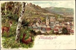 Artiste Lithographie Bad Blankenburg Thüringen, Stadtpanorama, Rehe - Duitsland