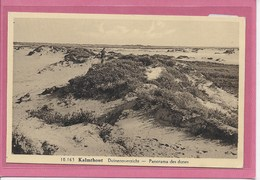 KALMTHOUT: HOELEN - DUINENOVERZICHT - Kalmthout