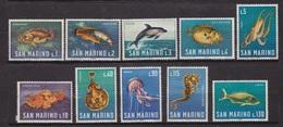 Faune Marine - SAN MARINO - SAINT MARIN - Dauphin, Saint Pierre, Poulpe, Rascasse - N° 676 à 685 ** - 1966 - San Marino