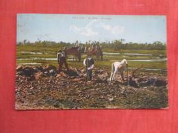 Pitch Lake La Brea   Trinidad   Has Stamp & Cancel      Ref 3761 - Trinidad