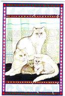 Chats  - Cats -katzen -gatto - Poezen - Katten