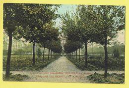 * Melsele (Beveren Waas - Gaverland) * (E. & B.) Pensionnat Demoiselles, Kostschool, école, School, Jardin, Parc, TOP - Beveren-Waas