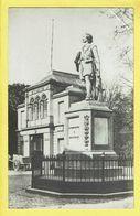 * Antwerpen - Anvers - Antwerp * (Fotokaart - Carte Photo) Statue, Monument, Mémorial, Standbeeld, Musée, Rare - Antwerpen