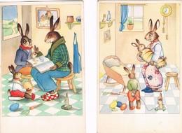 2 Cartes Lapin Humanise-dressed Rabbit- Geklede Hazen - Geklede Dieren
