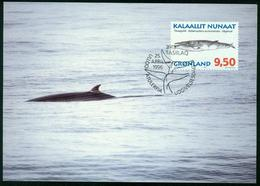 Mk Greenland Maximum Card 1996 MiNr 292 Y | Whales, Minke Whale - Cartes-Maximum (CM)