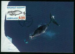 Mk Greenland Maximum Card 1996 MiNr 291 Y | Whales, Bowhead Whale - Cartes-Maximum (CM)