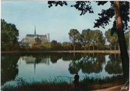 80  Amiens  La Cathedrale  Vue De L'etang Saint Pierre - Amiens