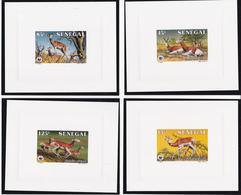 Sénégal - WWF - Gazelle N'Dama - Série De 4 Feuillets De Luxe - 1986 - Timbres N° 661/4 -  Illustrés Par BUZIN - Senegal (1960-...)