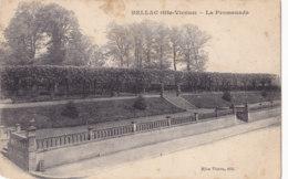 Bellac (87) - La Promenade - Bellac
