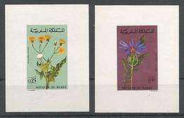 Maroc Morocco Yv.648/49 Série Compl. Sur 2 Petits Feuillets ESSAIS NON-DENTELE Proofs Imperforated MNH / ** 1972 Fleurs - Morocco (1956-...)