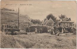 CPA  AUVERGNE BATTEUSE DE BLE    MOISSONNEUSE BATTEUSE - Landbouw