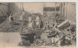 51. REVOLUTION EN CHAMPAGNE AVRIL 1911 - France