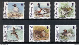 ALDERNEY : 04-05-2011 Birds Of The Bailiwick - Alderney