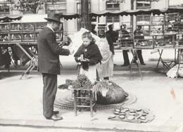 PARIS 1900. Du Mourron Pour Les Petits Oiseaux. Petite Vendeuse. Marché Aux Oiseaux. - Artisanry In Paris