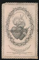PATER DAMIANUS DE VEUSTER - EILAND MOLOKAÏ  1889    2 SCANS - Décès