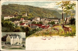 Lithographie Liebenstein In Thüringen, Schloss Altenstein, Ortschaft Mit Landschaftsblick, Hirsch - Duitsland