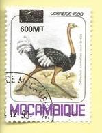 TIMBRES - STAMPS - MOZAMBIQUE / MOÇAMBIQUE - OISEUX - AUTRUCHES - TIMBRE OBLITÉRÉ AVEC SURCHARGE NOIR 600 MT - TRÈS RARE - Straussen- Und Laufvögel
