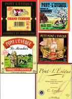 Étiquettes De Fromage (Lot De 5) : PONT L'EVÊQUE, Gillot, Normandie, Livarot, Betton, Saint Hillaire De Briouze, Menhir - Cheese